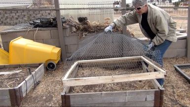 Building a Critter Cage